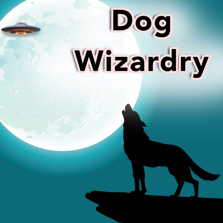 Dog Wizardry